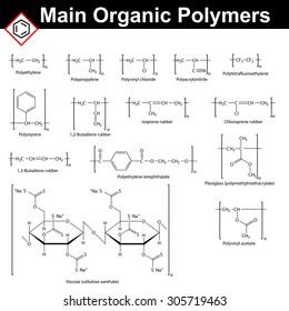 Main organic polymers: rubbers, polystyrene, polyacrylonitrile, polyvinyl chloride, polyvinyl acetate, viscose, polypropylene, polyethylene, teflon, plexiglass, 2d vector, isolated on white background