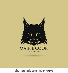 Maine Coon cat - vector illustration