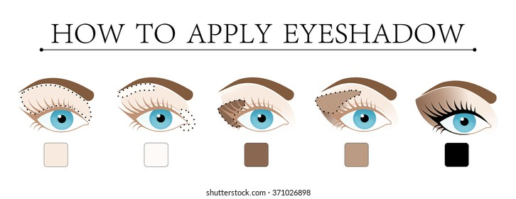 Make up tutorial set - stages of applying brown shadow on blue women eye with brow and lashes. eye shadow apply step by step. makeup concept, vector art image illustration isolated on white background