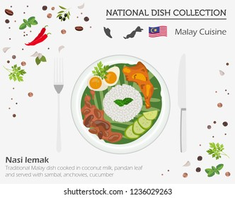 Malayan Cuisine. Asian national dish collection. Nasi lemak  isolated on white, infograpic. Vector illustration