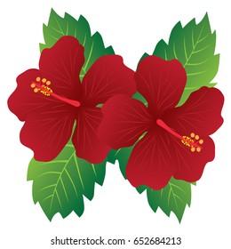 Bunga Raya Images Stock Photos Vectors Shutterstock