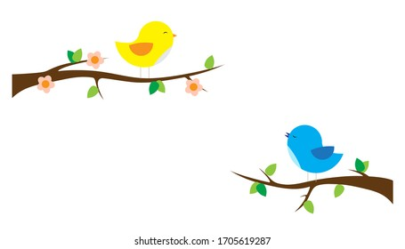 Male bird sings a spring love song to female bird (isolated on white background)