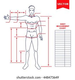Man Body Measurement Chart Stock Vectors, Images & Vector