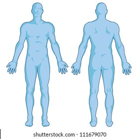 Male body shapes � human body outline � vector - posterior and anterior view - full body