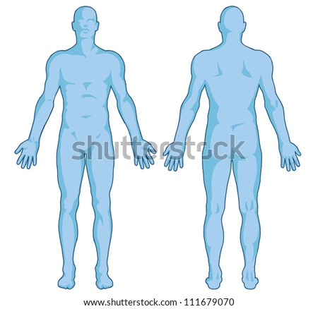 Male Body Shapes AAA Human Outline AA