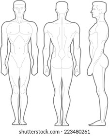 Male Body Standing Anatomical Figure, vector illustration cartoon.