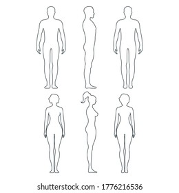 Male and female anatomy human character, people dummy front and view side body silhouette, isolated on white, flat vector illustration. Black and outline mannequin people scale concept.