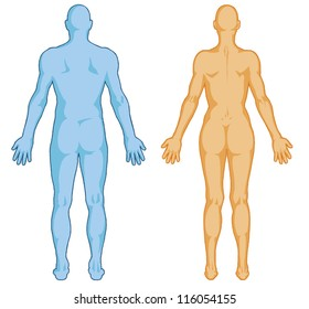 Male Female Body Shapes AAA Human Outline A
