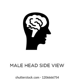Male head side view with brains icon. Male head side view with brains symbol design from Human Body Parts collection.