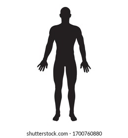 male human body vector isolated on with background, icon
