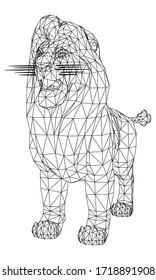 Male lion lines illustration. Abstract vector lion on the white background