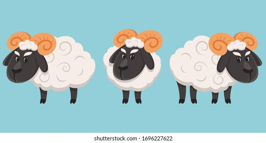 Male sheep in different poses. Farm animal in cartoon style.