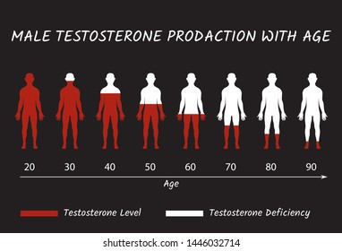 Male Testosterone Prodaction with Age. Testosterone Hormonal Level