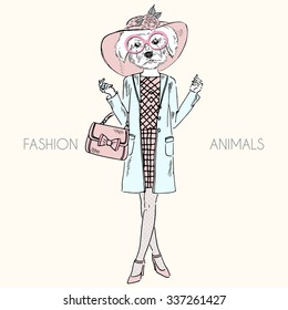 maltese doggy girl dressed up in glamour style, fashion animal illustration