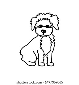 Maltipoo dog breed vector illustration. Cute miniature pet sitting, full body. Black and white drawing of a lovely puppy.