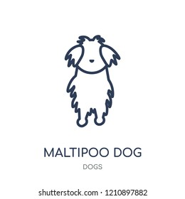 Maltipoo dog icon. Maltipoo dog linear symbol design from Dogs collection. Simple outline element vector illustration on white background.