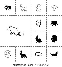 Mammal icon. collection of 13 mammal filled and outline icons such as udder, lion, rabbit, elephant, bull, hippopotamus, wolf, goat. editable mammal icons for web and mobile.