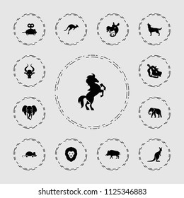 Mammal icon. collection of 13 mammal filled icons such as hog, lion, elephant, wolf, kangaroo, hippopotamus, mouse toy, horse. editable mammal icons for web and mobile.