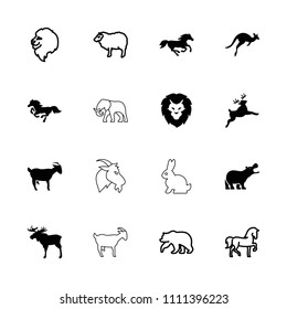 Mammal icon. collection of 16 mammal filled and outline icons such as moose, horse, bear, lion, sheep, hippopotamus, deer, kangaroo. editable mammal icons for web and mobile.