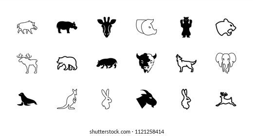 Mammal icon. collection of 18 mammal filled and outline icons such as giraffe, goat, hippopotamus, bear, panther, deer, wolf, rabbit. editable mammal icons for web and mobile.