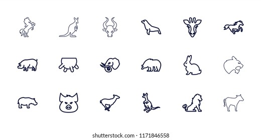 Mammal icon. collection of 18 mammal outline icons such as udder, giraffe, lion, rabbit, pig, bear, antelope, cangaroo, horse. editable mammal icons for web and mobile.