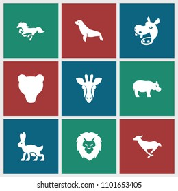 Mammal icon. collection of 9 mammal filled icons such as giraffe, seal, bear, hippopotamus, lion, antelope, horse. editable mammal icons for web and mobile.