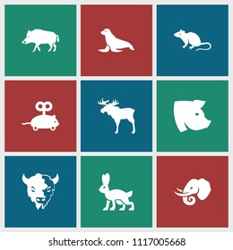 Mammal icon. collection of 9 mammal filled icons such as hog, moose, mouse, goat, pig, elephant, mouse toy, rabbit. editable mammal icons for web and mobile.