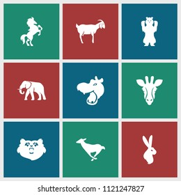 Mammal icon. collection of 9 mammal filled icons such as bear, giraffe, hippopotamus, elephant, goat, horse, antelope. editable mammal icons for web and mobile.