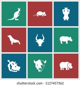 Mammal icon. collection of 9 mammal filled icons such as bull, goat, hippopotamus, seal, bear, kangaroo. editable mammal icons for web and mobile.