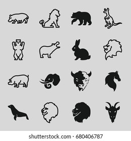 Mammal icons set. set of 16 mammal filled and outline icons such as bear, lion, rabbit, horse, goat, elephant, seal, hippopotamus, cangaroo