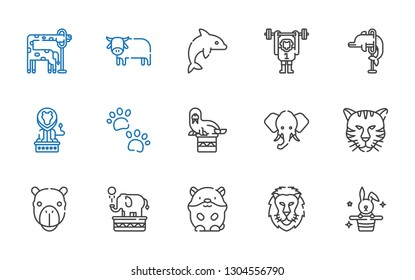 mammal icons set. Collection of mammal with rabbit, lion, hamster, elephant, camel, tiger, walrus, pawprints, dolphin, monkey, ox, giraffe. Editable and scalable mammal icons.
