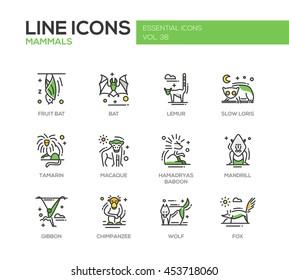 Mammals - set of modern vector line design icons and pictograms of animals. Bat, lemur, slow loris, tamarin, macaque, hamadryas baboon, mandrill, gibbon, chimpanzee, wolf fox