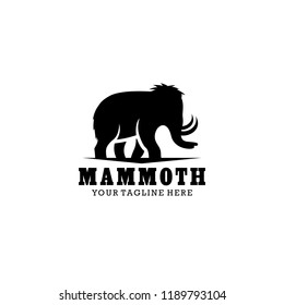Mammoth Logo Design