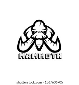 Mammoth vector logo template on white background for sport team or apparel emblem. Elephant head mascot with large ivory. Download and edit the EPS files. Esport logo maker.