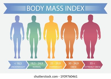 Man body mass index. Vector fitness bmi chart with male silhouettes and scale. Body mass index fot health life, obesity and overweight illustration.