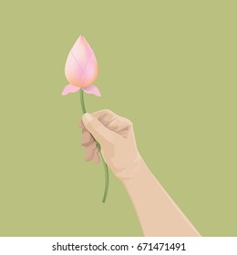 Man hand holding lotus buds on olive green background. In Buddhism, lotus offerings are an act of respect.