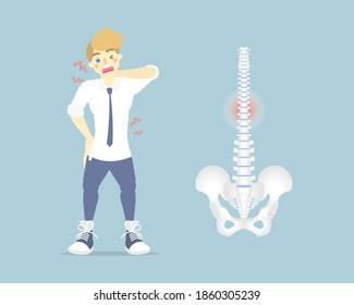 man having back pain, backache, neck, upper, lower, waist pain,  anatomy of human spine, health care symptoms orthopedic concept, internal organs body part, flat vector illustration character design