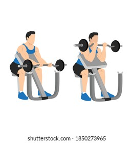 Man lifting barbell in a gym on EZ bar preacher curl, making biceps exercise. isolated on white background and layers. Workout character