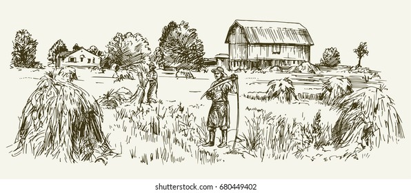 A man with a scythe in a field. Harvesting hay.