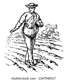 A man sowing seeds in field, vintage line drawing or engraving illustration