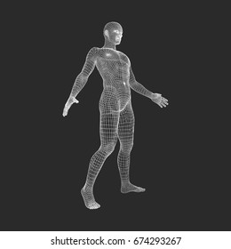 550f8aafb1ee7 Man Stands on his Feet.3D Model of Man. Geometric Design. 3d Polygonal