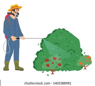 Man wearing special protective uniform vector, male with respirator and sprayer, farmer spraying roses bushes in garden with toxic liquid, pesticides