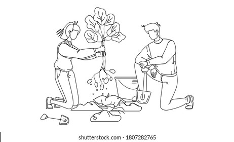 Man And Woman Volunteering Planting Tree Black Line Pencil Drawing Vector. Boy And Girl Volunteers Gardening With Bucket And Shovel, Volonteering For Safe Environmental Ecology. Illustration