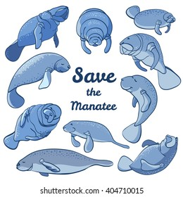 Manatees swimming in the ocean. Save the manatee concept. Character design. Vector illustrations isolated on white background.