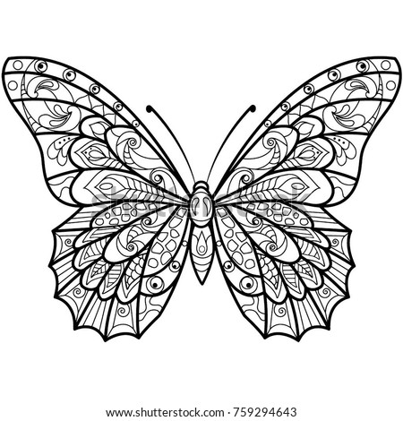 mandala design butterfly drawing coloring book stock vector royalty