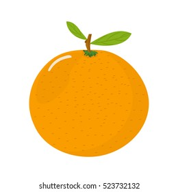 Mandarin icon. Vector illustration