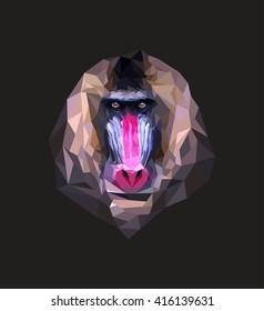 mandrill. polygonal graphics. vector illustration