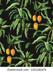 Mango branches seamless pattern. Colored leaves and fruits on black background.