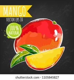 Mango. Fresh fruit bright sketch style vector. Juicy tropical fruits. Black chalkboard background. Eps 10