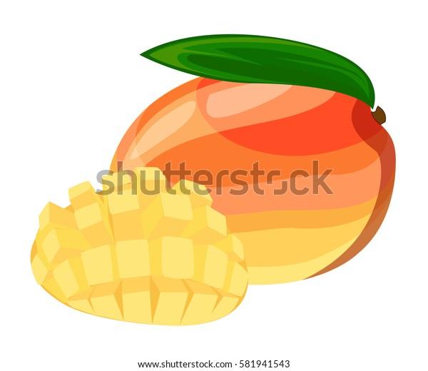 Mango fresh  and a half of mango fruit Isolated elements on white background vector illustration